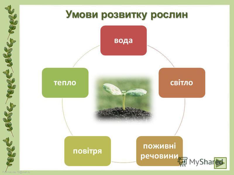 FokinaLida.75@mail.ru водасвітло поживні речовини повітрятепло Умови розвитку рослин