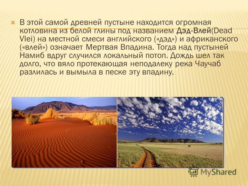 В этой самой древней пустыне находится огромная котловина из белой глины под названием Дэд-Влей(Dead Vlei) на местной смеси английского («дед») и африканского («влей») означает Мертвая Впадина. Тогда над пустыней Намиб вдруг случился локальный потоп.