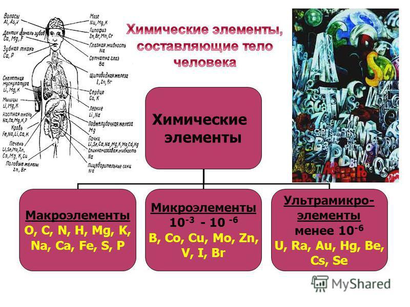 Химические элементы Макроэлементы О, С, N, H, Mg, K, Na, Ca, Fe, S, P Микроэлементы 10 -3 - 10 -6 B, Co, Cu, Mo, Zn, V, I, Br Ультрамикро- элементы менее 10 -6 U, Ra, Au, Hg, Be, Cs, Se