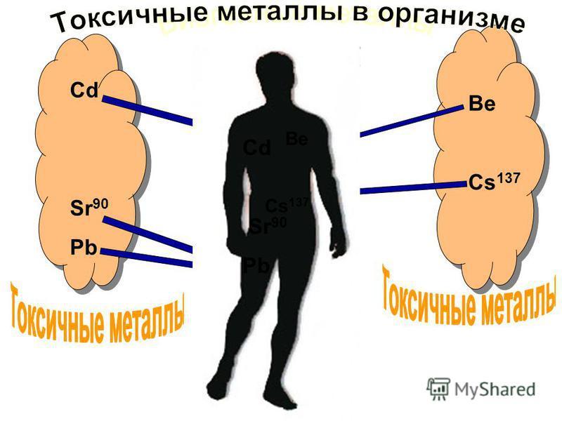Mg Zn K Ca Cd Sr 90 Pb Be Cs 137 Cd Sr 90 Pb Be Cs 137