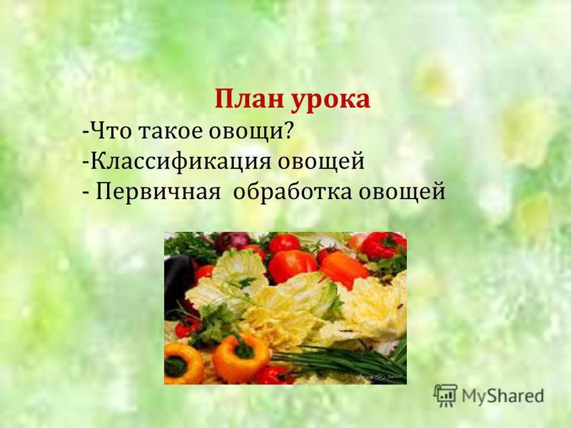 План урока -Что такое овощи? -Классификация овощей - Первичная обработка овощей