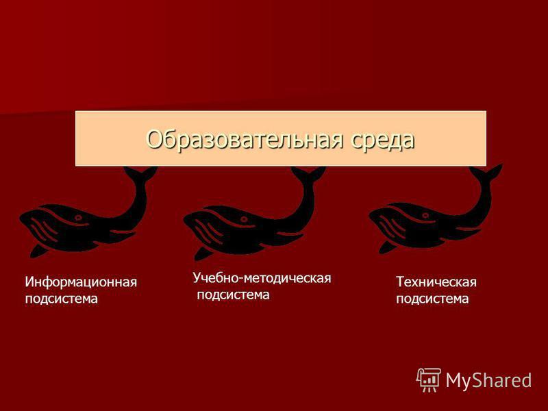 Образовательная среда Информационная подсистема Техническая подсистема Учебно-методическая подсистема
