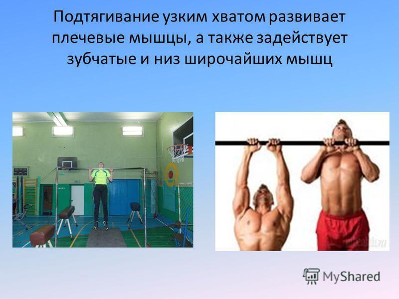 Подтягивание узким хватом развивает плечевые мышцы, а также задействует зубчатые и низ широчайших мышц.