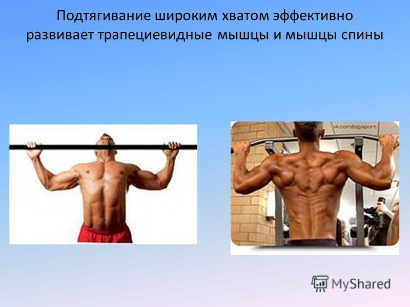 Подтягивание широким хватом эффективно развивает трапециевидные мышцы и мышцы спины