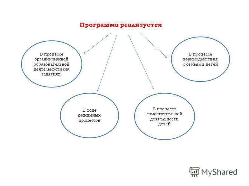 Программа реализуется В процессе организованной образовательной деятельности (на занятиях) В процессе взаимодействия с семьями детей В ходе режимных процессов В процессе самостоятельной деятельности детей
