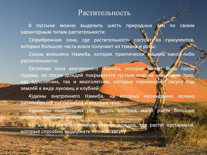 Растительность В пустыне можно выделить шесть природных зон по своим характерным типам растительности: 1)прибрежная зона, где растительность состоит из суккулентов, которые большую часть влаги получают из тумана и росы; 2)зона внешнего Намиба, котора