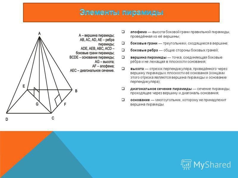 апофема высота боковой грани правильной пирамиды, проведённая из её вершины; боковые грани треугольники, сходящиеся в вершине; боковые ребра общие стороны боковых граней; вершина пирамиды точка, соединяющая боковые рёбра и не лежащая в плоскости осно