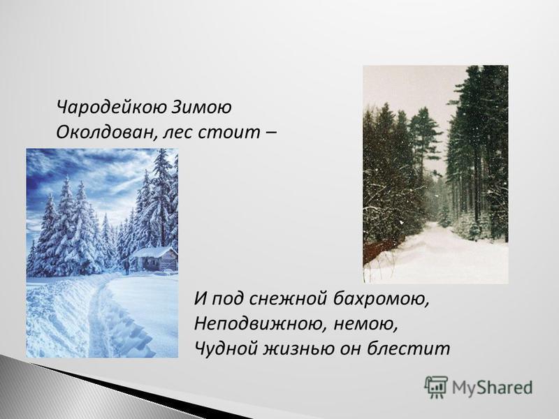 Чародейкою Зимою Околдован, лес стоит – И под снежной бахромою, Неподвижною, немою, Чудной жизнью он блестит