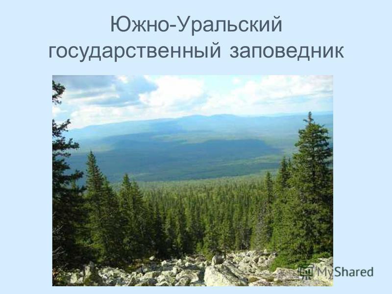 Южно-Уральский государственный заповедник