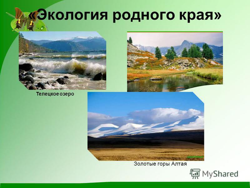 «Экология родного края» Телецкое озеро Золотые горы Алтая