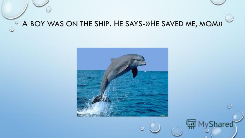 A BOY WAS ON THE SHIP. H E SAYS -»H E SAVED ME, MOM »