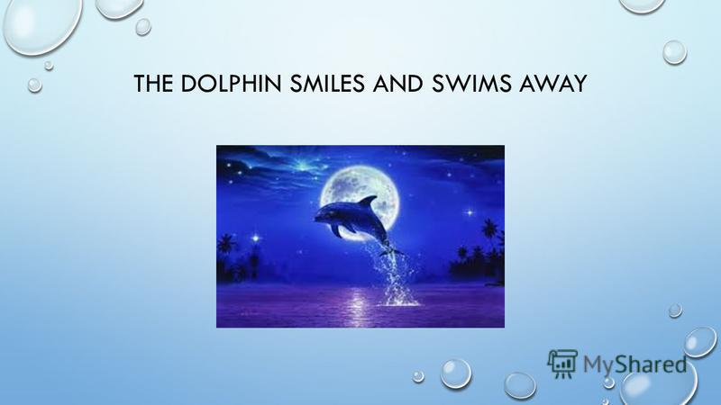THE DOLPHIN SMILES AND SWIMS AWAY