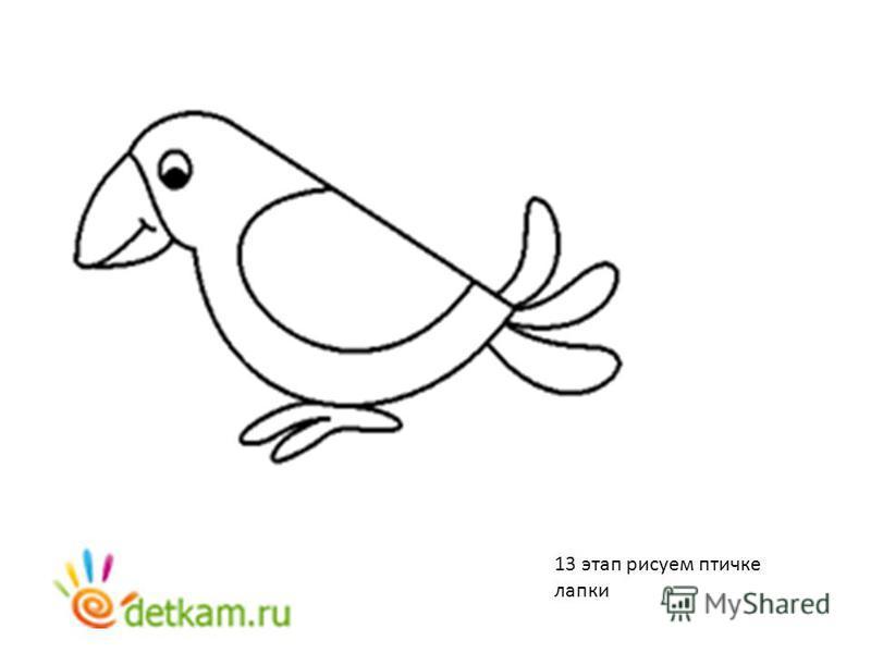 13 этап рисуем птичке лапки