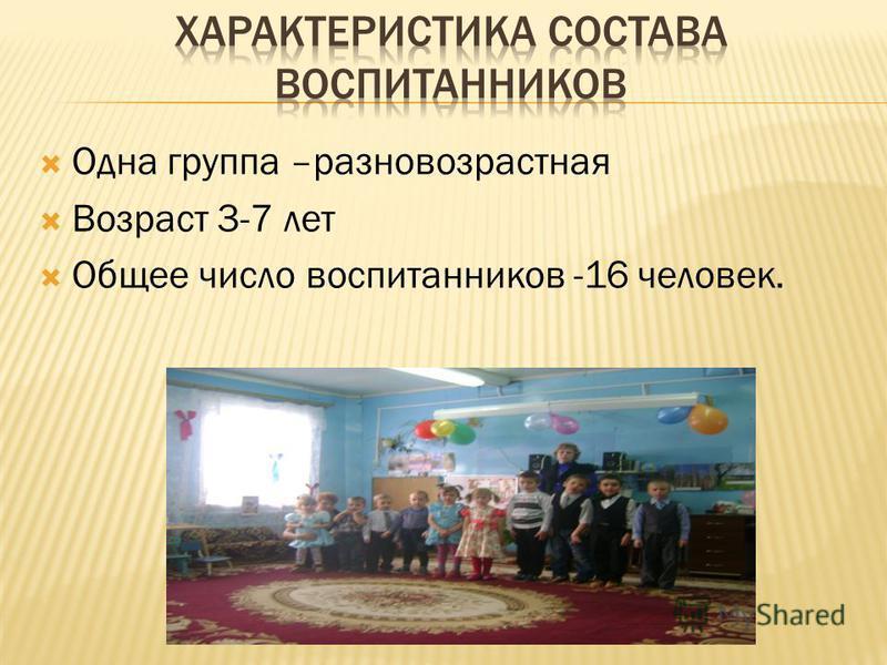 Одна группа –разновозрастная Возраст 3-7 лет Общее число воспитанников -16 человек.