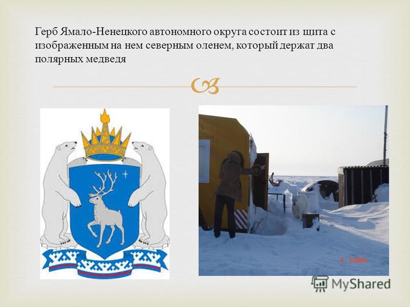 Герб Ямало - Ненецкого автономного округа состоит из щита с изображенным на нем северным оленем, который держат два полярных медведя