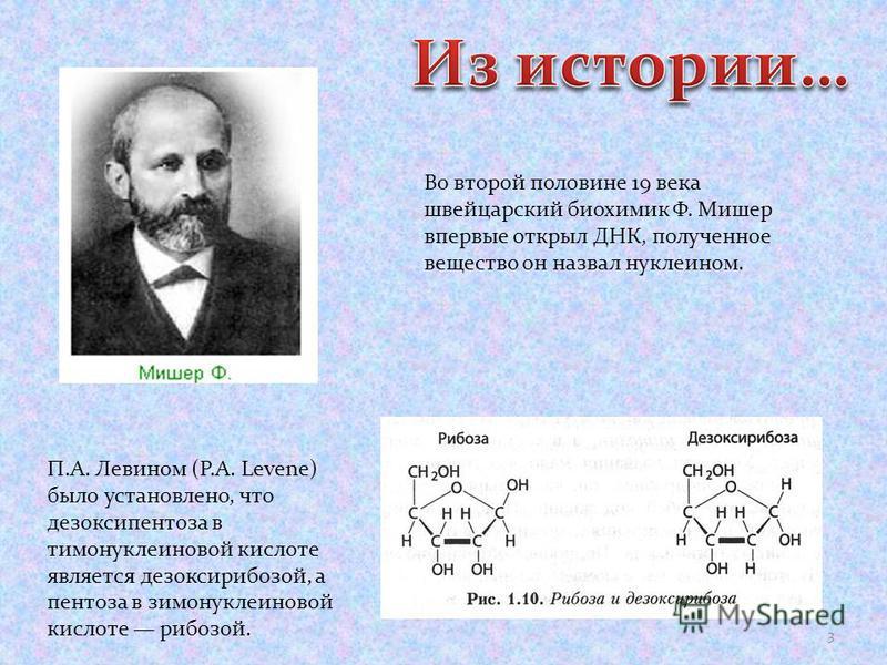 Во второй половине 19 века швейцарский биохимик Ф. Мишер впервые открыл ДНК, полученное вещество он назвал нуклеином. П.А. Левином (Р.A. Levenе) было установлено, что дезоксипентоза в тимонуклеиновой кислоте является дезоксирибозой, а пентоза в тимон