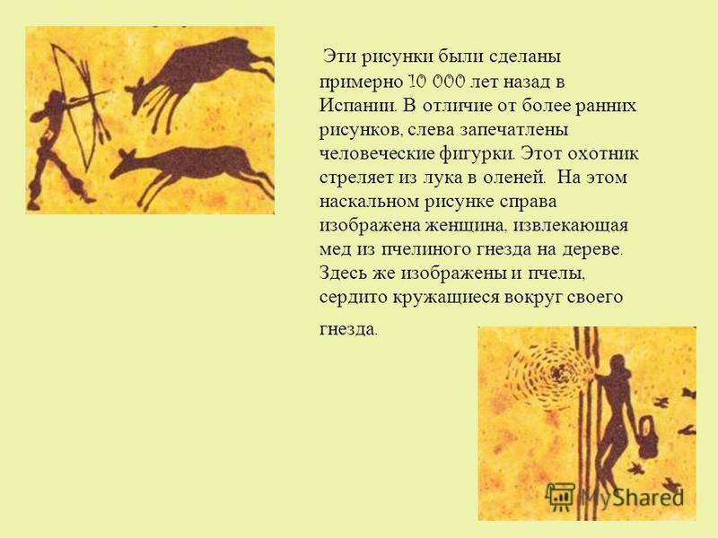 Эти рисунки были сделаны примерно 10 000 лет назад в Испании. В отличие от более ранних рисунков, слева запечатлены человеческие фигурки. Этот охотник стреляет из лука в оленей. На этом наскальном рисунке справа изображена женщина, извлекающая мед из