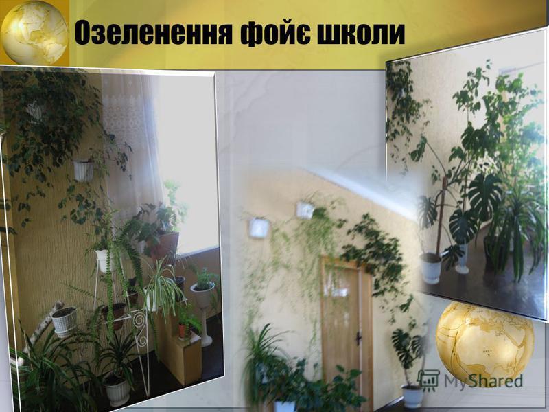 Озеленення фойє школи