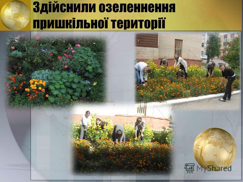 Здійснили озеленнення пришкільної території