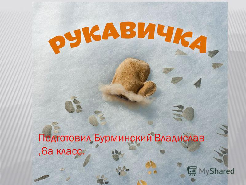 Подготовил Бурминский Владислав,6 а класс.