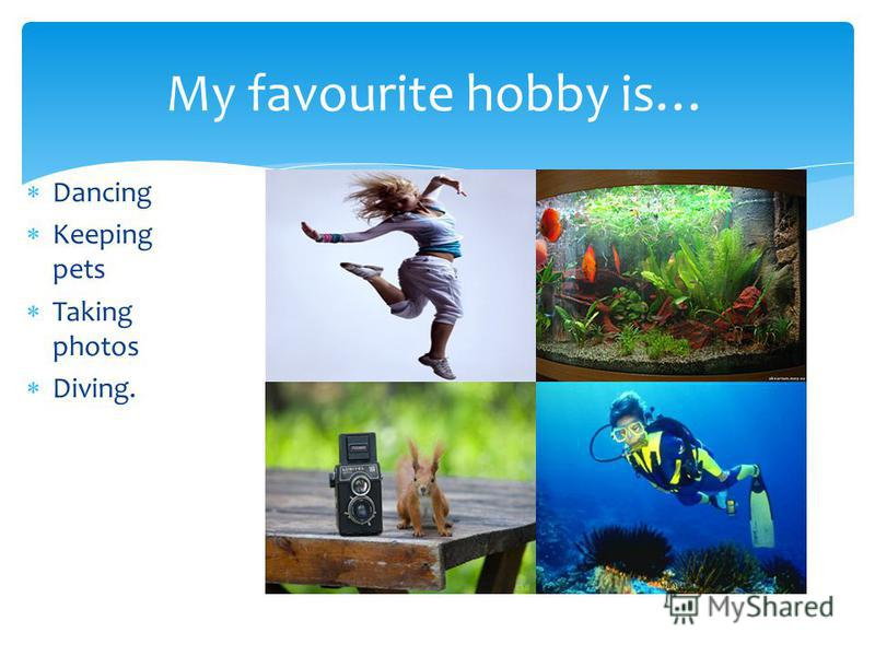 Dancing Keeping pets Taking photos Diving. My favourite hobby is…