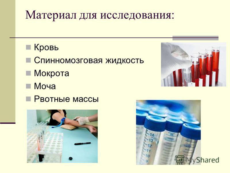 Материал для исследования: Кровь Спинномозговая жидкость Мокрота Моча Рвотные массы