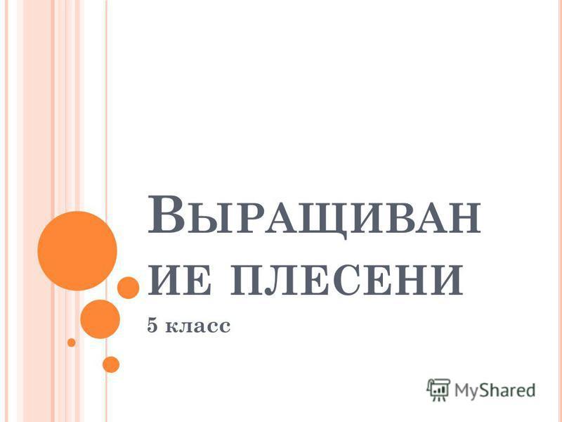 В ЫРАЩИВАН ИЕ ПЛЕСЕНИ 5 класс