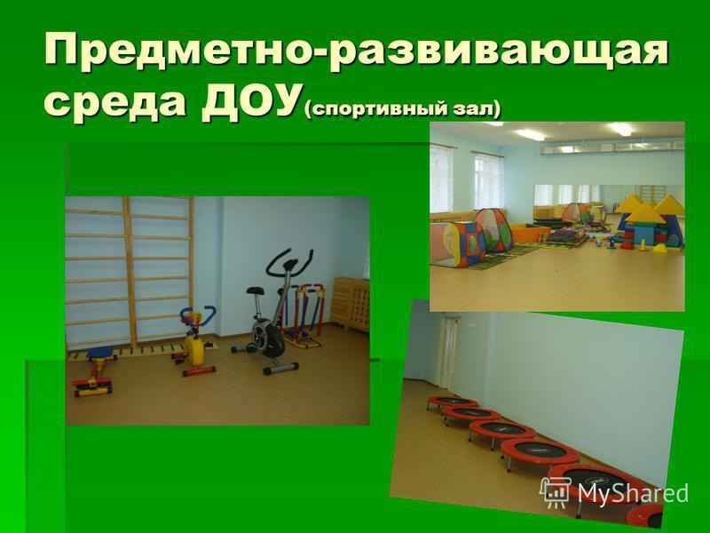 Предметно-развивающая среда ДОУ (спортивный зал)