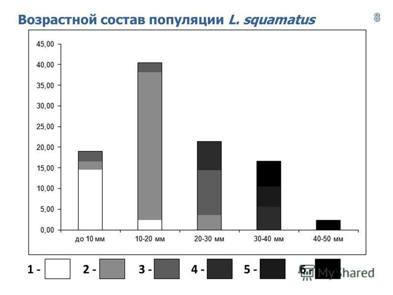 Возрастной состав популяции L. squamatus 1 -2 -4 -3 -6 -5 -