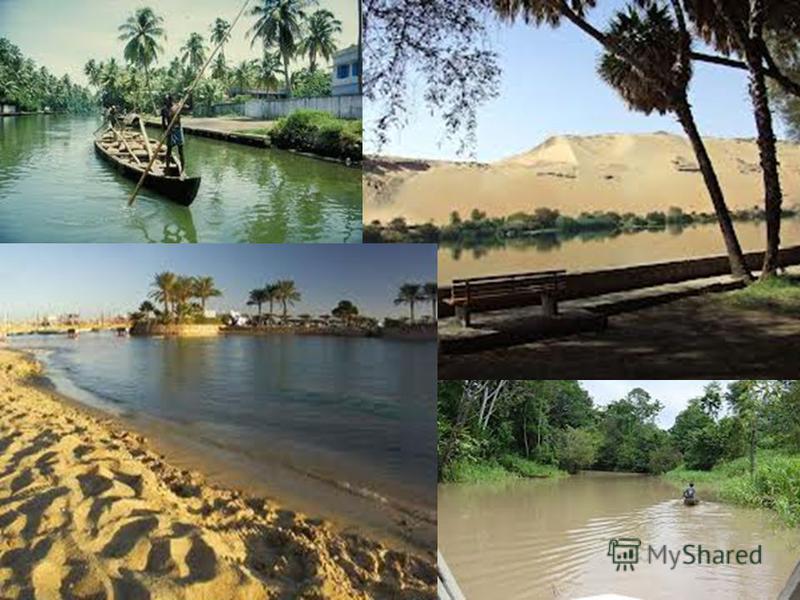 Фото Нілу з очеретом