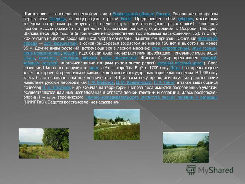 Шипов лес заповедный лесной массив в Воронежской области России. Расположен на правом берегу реки Осередь, на водоразделе с рекой Битюг. Представляет собой дубраву, массивным зелёным «островом» раскинувшуюся среди окружающей степи (ныне распаханной).
