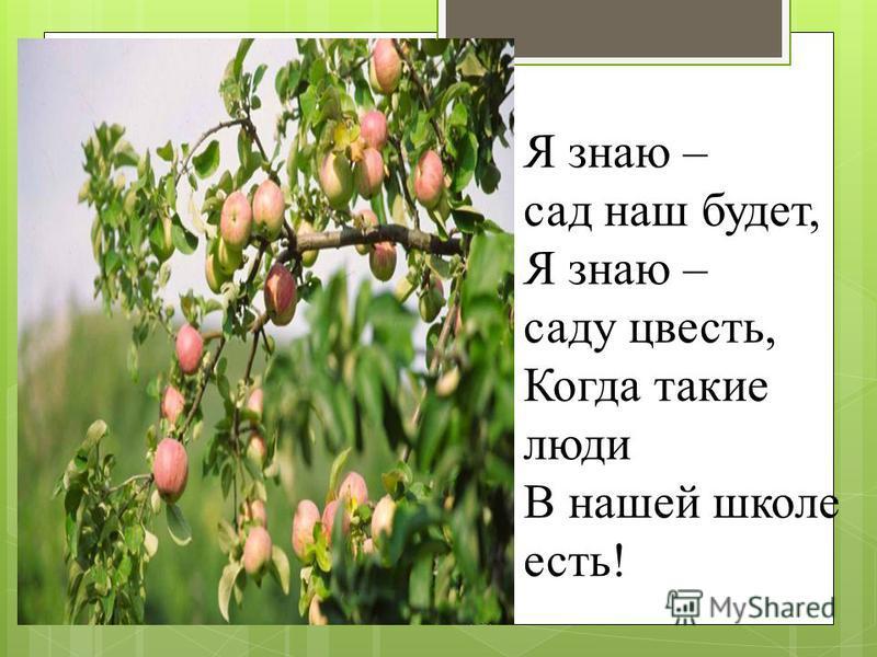 Я знаю – сад наш будет, Я знаю – саду цвесть, Когда такие люди В нашей школе есть!