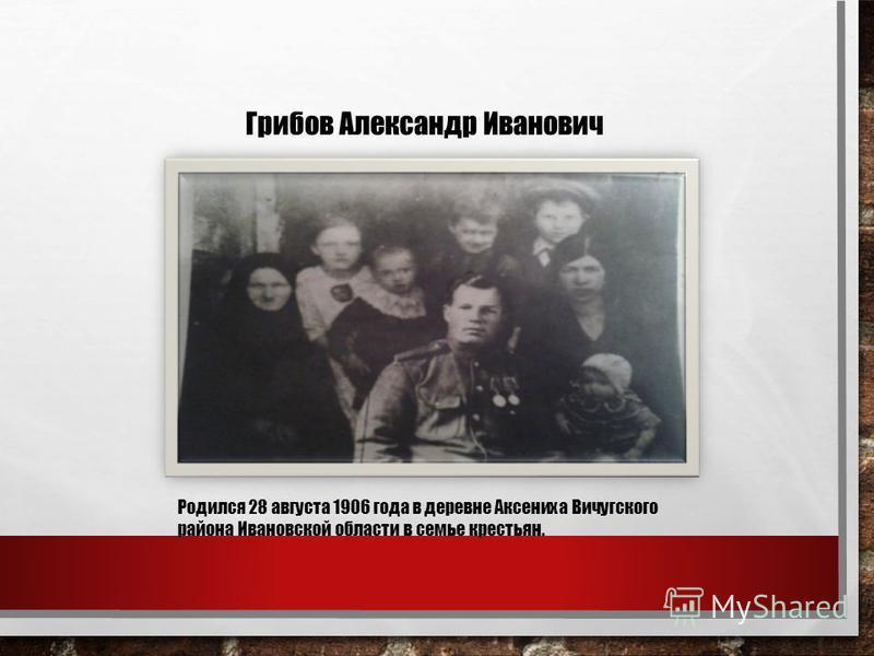 Грибов Александр Иванович Родился 28 августа 1906 года в деревне Аксениха Вичугского района Ивановской области в семье крестьян.