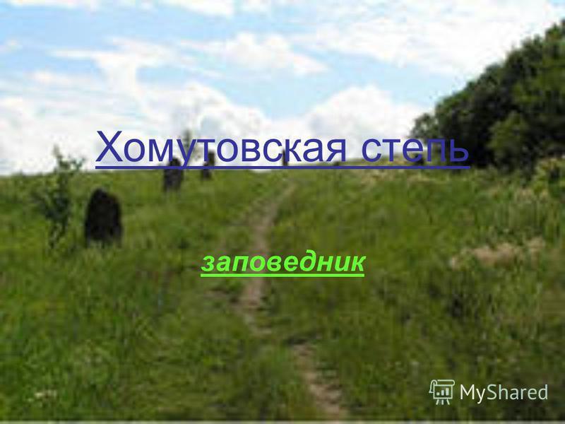 заповедник Хомутовская степь