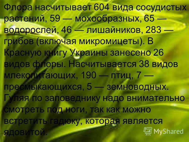 Флора насчитывает 604 вида сосудистых растений, 59 мохообразных, 65 водорослей, 46 лишайников, 283 грибов (включая микромицеты). В Красную книгу Украины занесено 26 видов флоры. Насчитывается 38 видов млекопитающих, 190 птиц, 7 пресмыкающихся, 5 земн