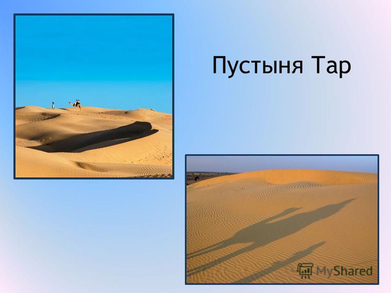 Пустыня Тар