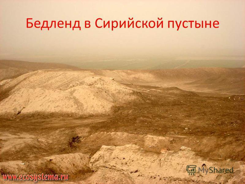 Бедленд в Сирийской пустыне