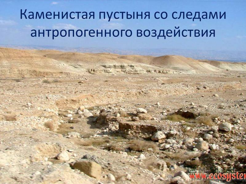 Каменистая пустыня со следами антропогенного воздействия