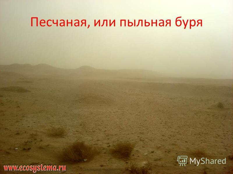 Песчаная, или пыльная буря