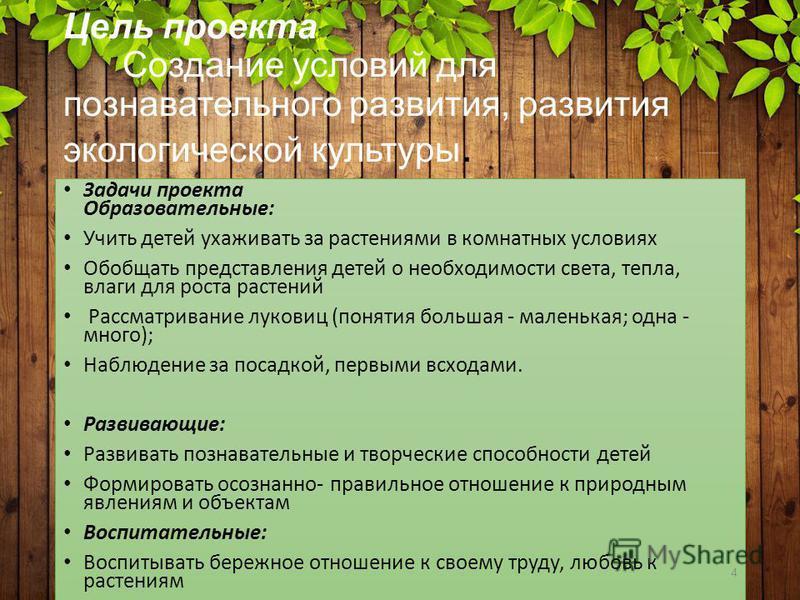 Цель проекта Создание условий для познавательного развития, развития экологической культуры. Задачи проекта Образовательные: Учить детей ухаживать за растениями в комнатных условиях Обобщать представления детей о необходимости света, тепла, влаги для