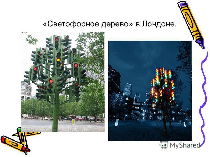«Светофорное дерево» в Лондоне.