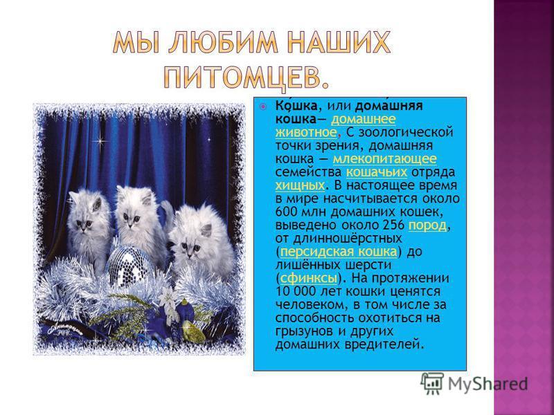 Кошка, или домашняя кошка домашнее животное, С зоологической точки зрения, домашняя кошка млекопитающее семейства кошачьих отряда хищных. В настоящее время в мире насчитывается около 600 млн домашних кошек, выведено около 256 пород, от длинношёрстных