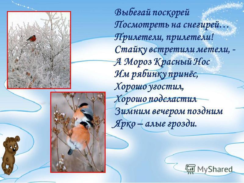 Выбегай поскорей Посмотреть на снегирей… Прилетели, прилетели! Стайку встретили метели, - А Мороз Красный Нос Им рябинку принёс, Хорошо угостил, Хорошо подсластил Зимним вечером поздним Ярко – алые грозди.