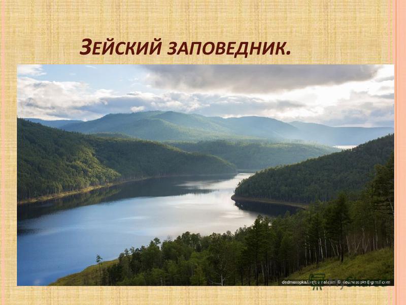 З ЕЙСКИЙ ЗАПОВЕДНИК.