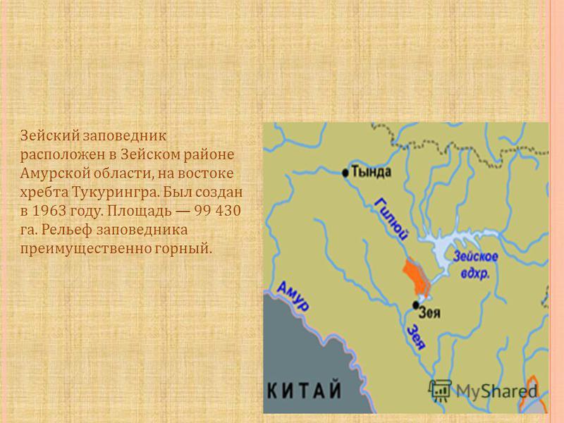 Зейский заповедник расположен в Зейском районе Амурской области, на востоке хребта Тукурингра. Был создан в 1963 году. Площадь 99 430 га. Рельеф заповедника преимущественно горный.