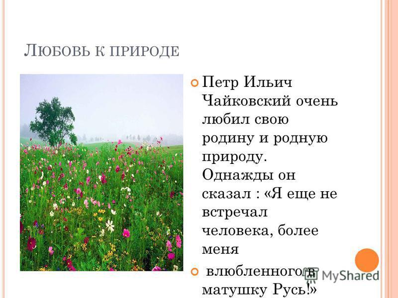 Л ЮБОВЬ К ПРИРОДЕ Петр Ильич Чайковский очень любил свою родину и родную природу. Однажды он сказал : «Я еще не встречал человека, более меня влюбленного в матушку Русь!»