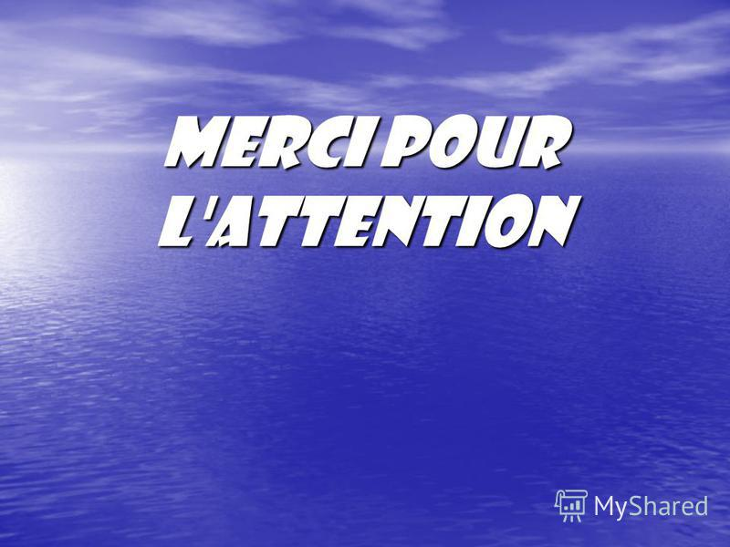 Merci pour l'attention