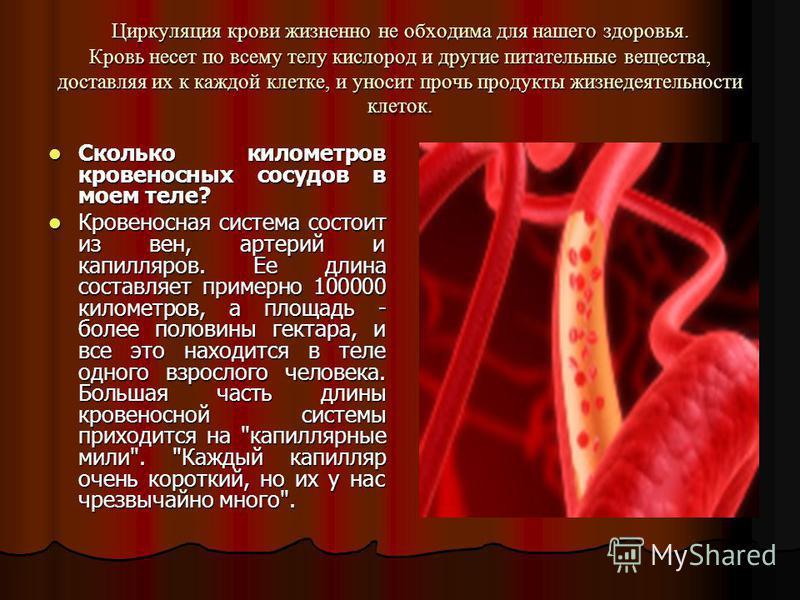 Циркуляция крови жизненно не обходима для нашего здоровья. Кровь несет по всему телу кислород и другие питательные вещества, доставляя их к каждой клетке, и уносит прочь продукты жизнедеятельности клеток. Сколько километров кровеносных сосудов в моем