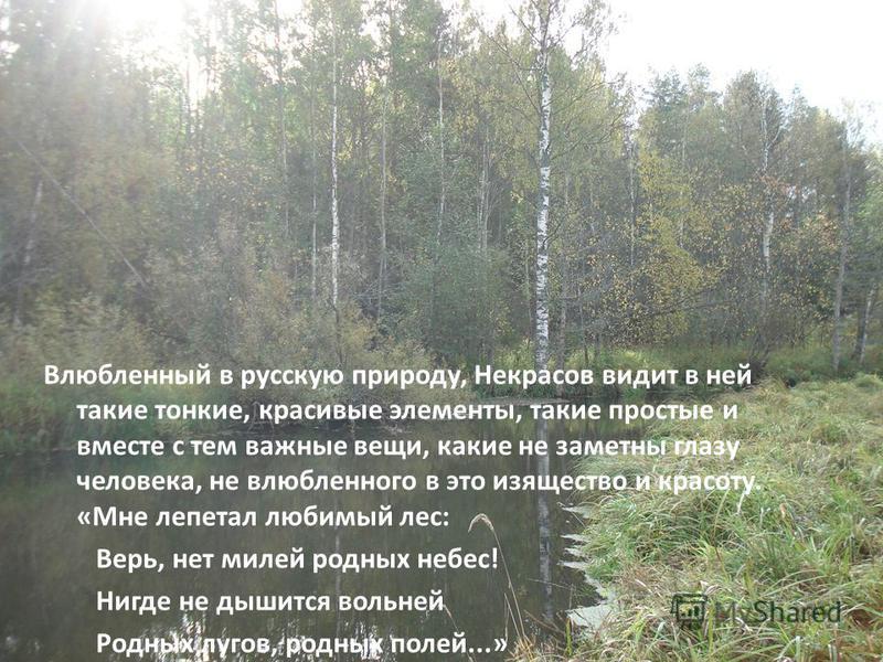 Влюбленный в русскую природу, Некрасов видит в ней такие тонкие, красивые элементы, такие простые и вместе с тем важные вещи, какие не заметны глазу человека, не влюбленного в это изящество и красоту. «Мне лепетал любимый лес: Верь, нет милей родных