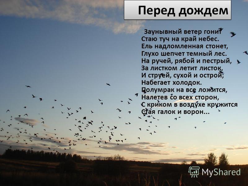 Перед дождем Заунывный ветер гонит Стаю туч на край небес. Ель надломленная стонет, Глухо шепчет темный лес. На ручей, рябой и пестрый, За листком летит листок, И струей, сухой и острой; Набегает холодок. Полумрак на все ложится, Налетев со всех стор